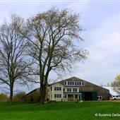 Kingswood Farm